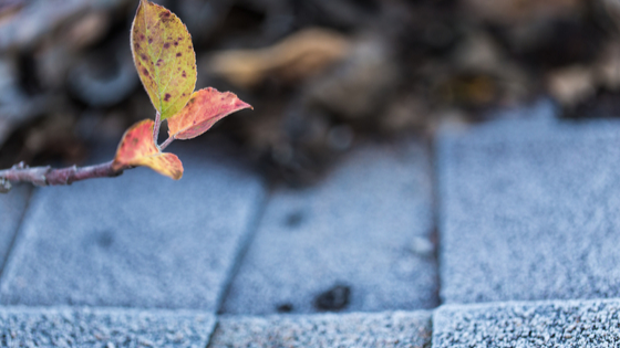 4 Winter Roof Maintenance Tasks You Need To Do Now